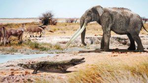I resti di antichi coccodrilli africani scoperti in Spagna