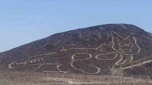 Nazca: scoperto antichissimo geoglifo di gatto. 'É più antico delle linee di Nazca'