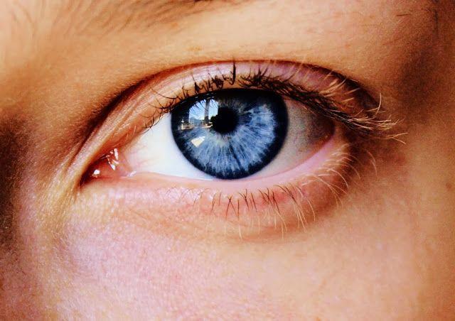 Rigenerazione oculare: la  capacità del corpo umano 'soppressa' dall'evoluzione