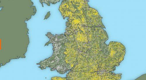 I boschi dell'Inghilterra potrebbero essere raddoppiati e coprire il 20% del Paese