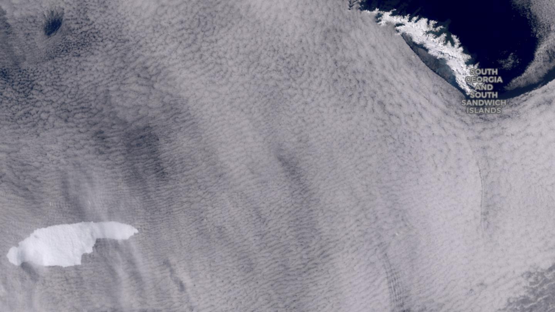 Antartico: il più grande iceberg si avvicina alla Georgia del Sud