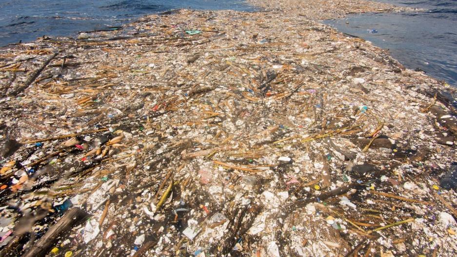 Ambiente: sulla Terra più materiali artificiali che biomassa
