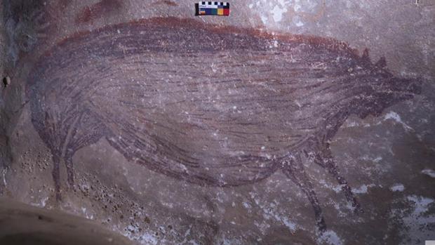 Archeologia, scoperta la prima opera figurativa al mondo: un cinghiale