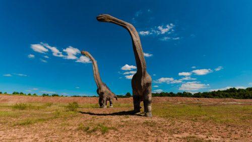 Paleontologia: i fossili dell'animale più grande mai esistito scoperti in Argentina