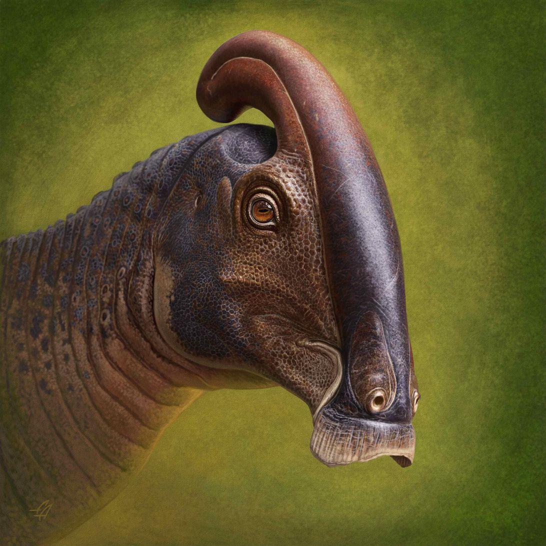 Paleontologia: scoperto il cranio di un dinosauro con naso a forma di tubo