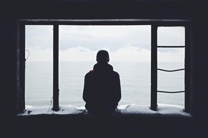 Essere asociali è davvero sinonimo di intelligenza? La ricerca