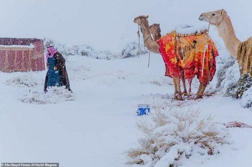 Neve in Africa e Arabia Saudita: scenari spettacolari in Algeria