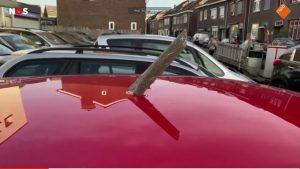 Olanda: precipita motore di aereo. 2 feriti e numerosi danni