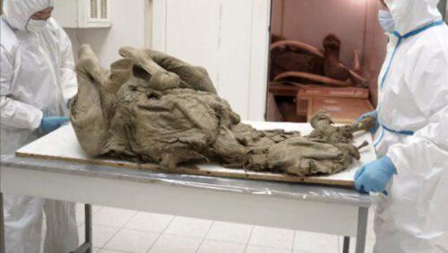 Russia: esperti studiano i 'paleovirus' negli animali preistorici