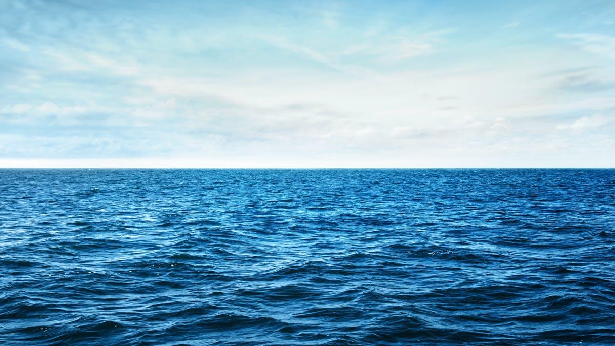Scoperto enorme 'ciclo del carbonio' negli oceani
