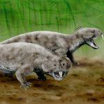 Elorhynchus carrolli: il nuovo rincosauro scoperto in Argentina