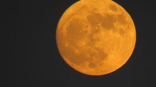 Splendida superluna illumina i nostri cieli. È la prima del 2021