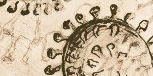 Un antico coronavirus ha infettato l'Asia per oltre 20mila anni