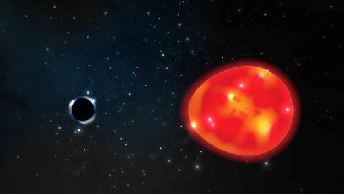 Spazio: nella costellazione dell'Unicorno il buco nero più vicino alla Terra