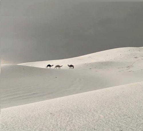 Grandinata record imbianca il deserto dell'Arabia Saudita. Le immagini spettacolari