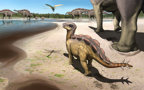 Cina: la più piccola impronta di stegosauro  al mondo scoperta nella provincia di Xinjiang