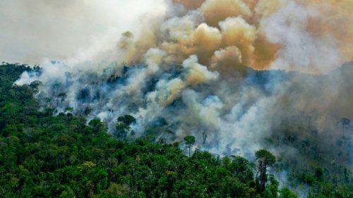 La foresta amazzonica sta emettendo più anidride carbonica di quanto ne assorbe