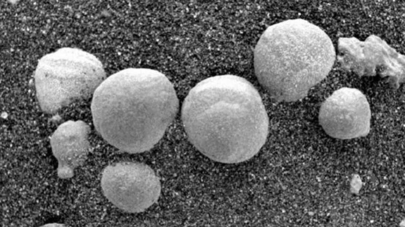 Funghi su Marte? Lo sostengono alcuni scienziati in uno studio. La comunità scientifica nega