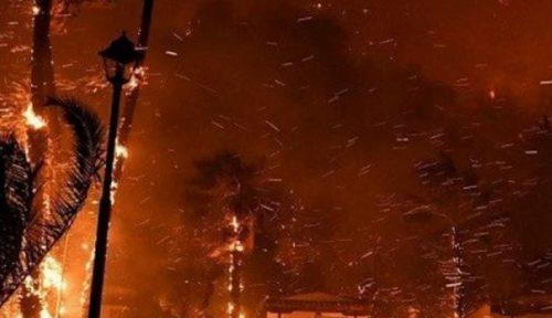 Impressionante rogo devasta 20 km quadrati di pinete in Grecia: centinaia di evacuati