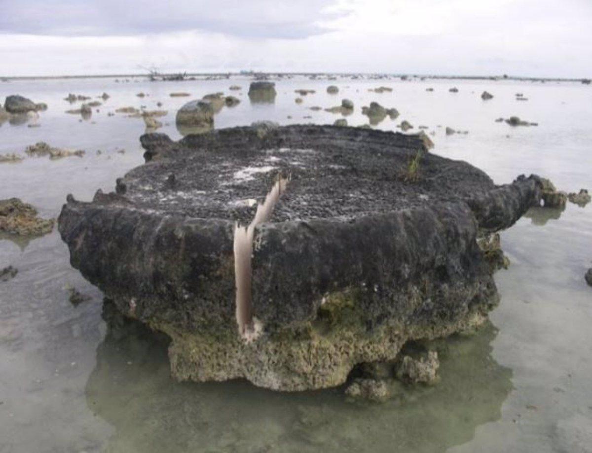 Indonesia: scoperte tracce di un terremoto 'lento' durato 32 anni. Ha innescato una scossa di 8.5 gradi