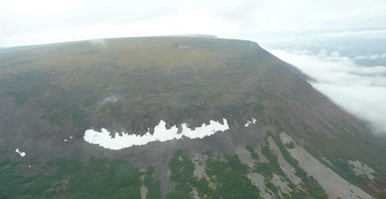 Improvvise eruzioni in Siberia provocarono una delle più gravi estinzioni di massa. Lo studio