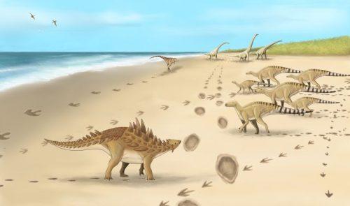 Paleontologia: le impronte degli 'ultimi dinosauri' scoperte in Gran Bretagna