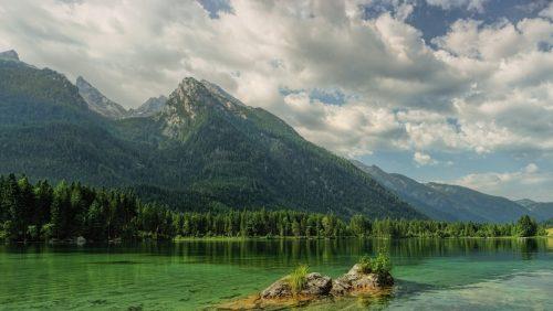 Natura: l'appello dell'ONU. 'Riforestare 1.000 milioni di ettari di terreno per salvare la Terra'