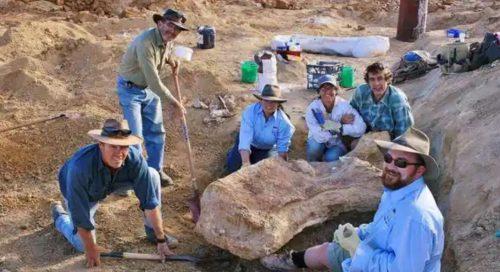 """Scoperto uno dei più grandi dinosauri al mondo: """"Cooper"""" è lungo come un campo da basket"""