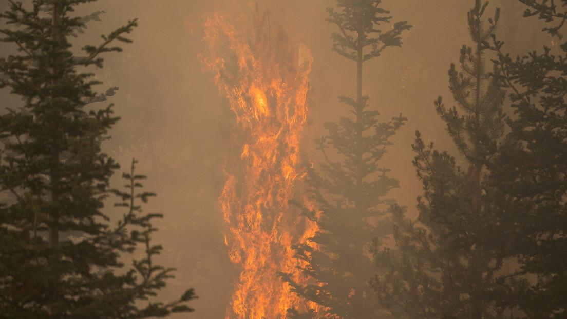 USA: l'incendio 'Bootleg Fire' è così esteso da modificare le condizioni meteorologiche