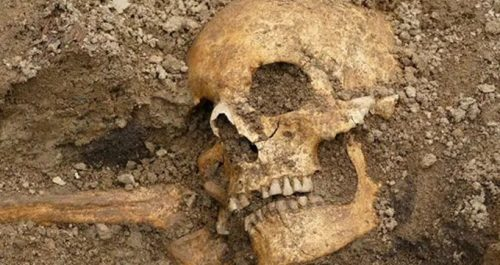 Svezia: resti vichinghi scoperti in una tomba cristiana