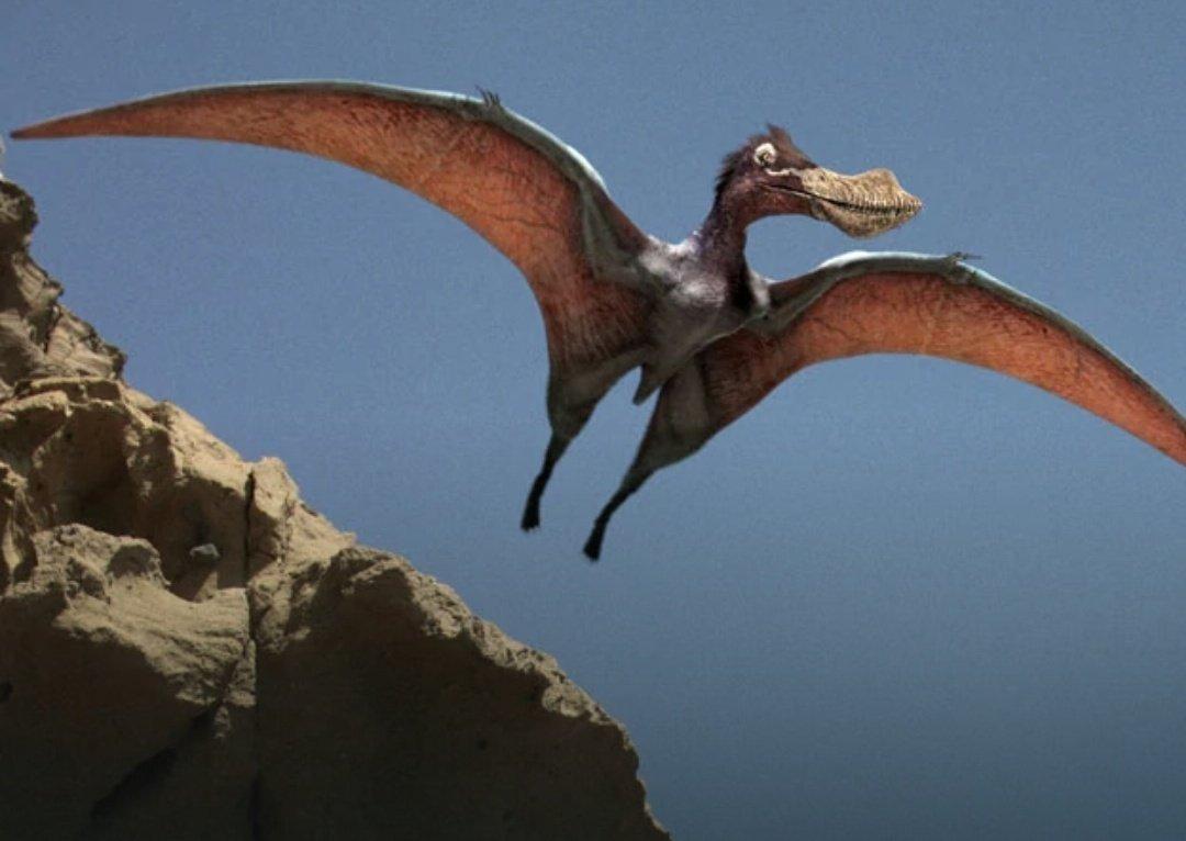 Australia: scoperta nuova specie di pterodattilo gigante