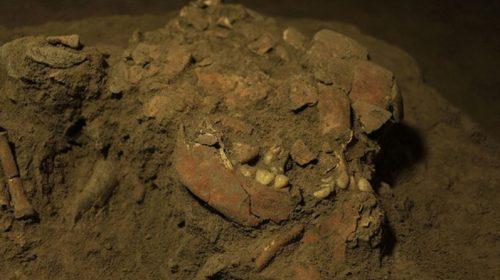 Scoperto il Dna integro di una donna vissuta 7.300 anni fa
