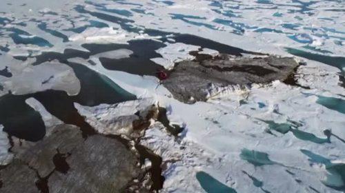 Scoperta per puro caso l'isola più a nord del mondo: è lunga 60 metri e larga 30