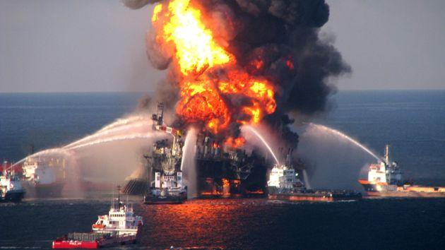 Il disastro di Deepwater Horizon ha provocato terribili malformazioni nelle ostriche
