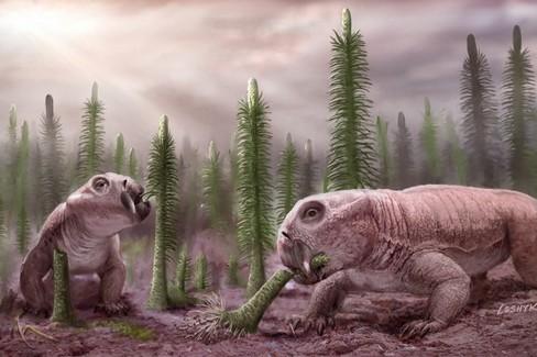 Gli umani stanno ricreando le condizioni della 'Grande Moria' del Permiano Triassico?