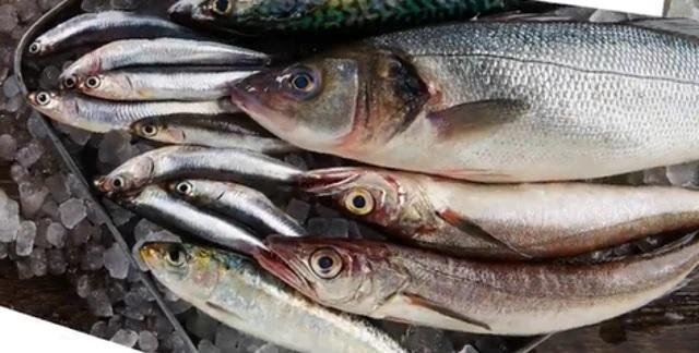 Ecco i pesci della longevità secondo gli scienziati americani