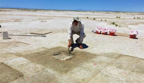 Tracce di tabacco e nicotina in uno scavo archeologico di 12.300 anni fa. La scoperta